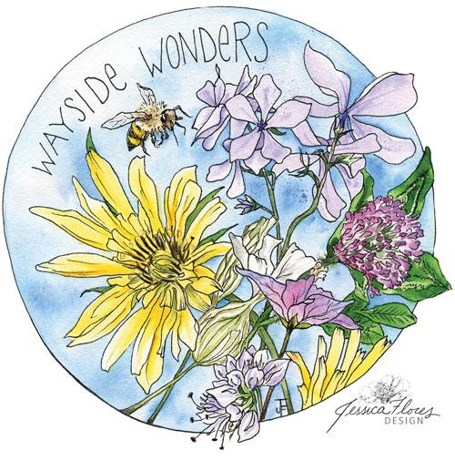 Wayside.wonders.legacy500